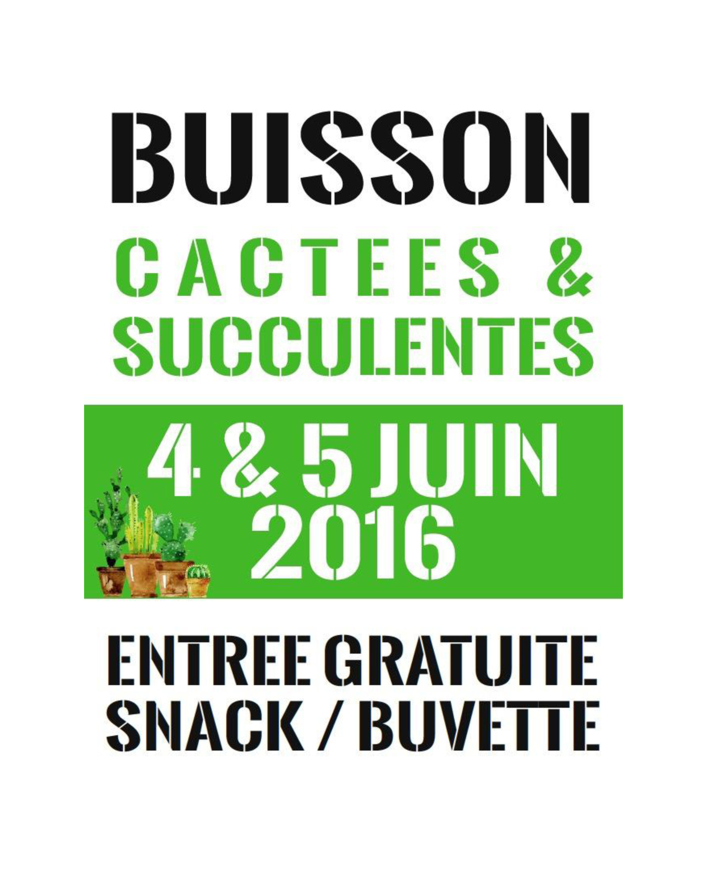 AFFICHE CACTEES-Buisson